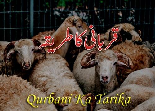 Qurbani ka tarika