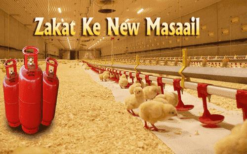 Poultry farm ki zakat