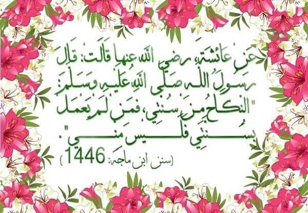 Shadi Hadees